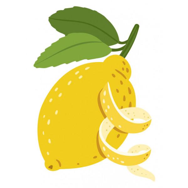 Citron BIO 10ml