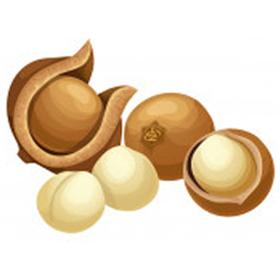 Macadamia (Huile végétale) 200ml